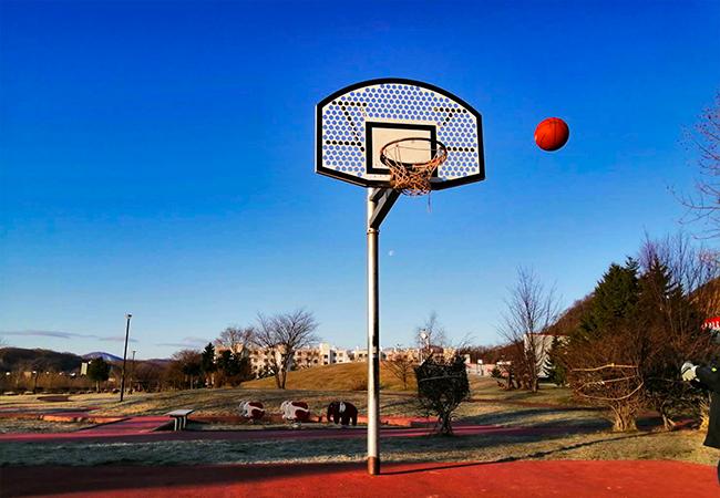 川沿公園バスケットゴール