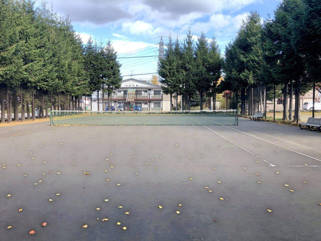 平岡公園テニスコート c