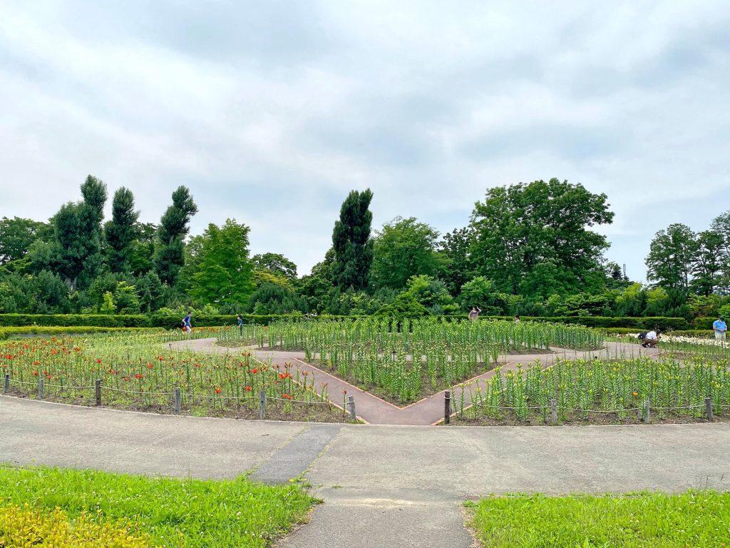 百合が原公園ガーデン
