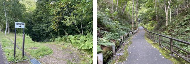 国営滝野すずらん丘陵公園アシリベツの滝