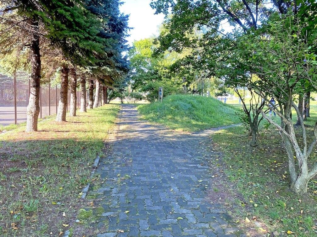 屯田みずほ東公園 舗装