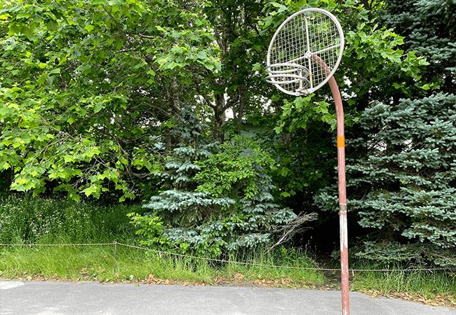 百合が原公園バスケット
