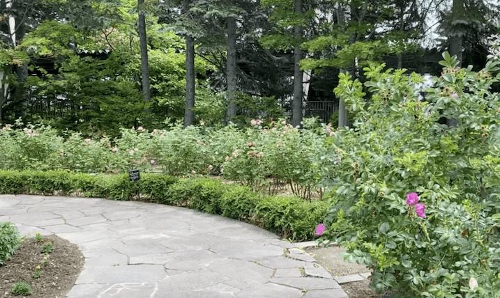 百合が原公園世界の庭園ポートランド