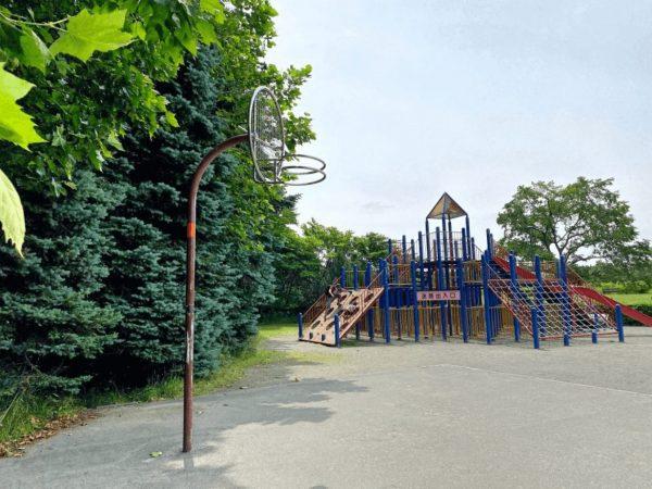 百合が原公園バスケットゴール