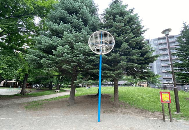 南円山さくら公園バスケットゴール