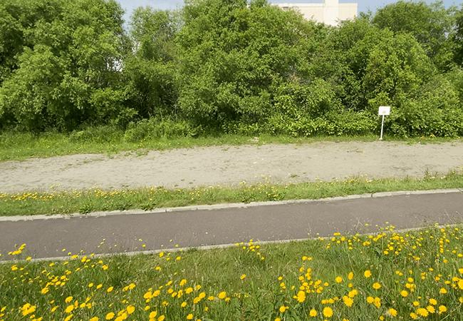 厚別川緑地バーベキュー広場