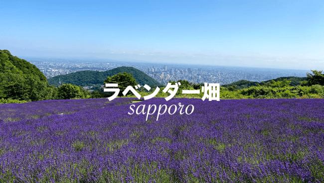 札幌ラベンダー畑
