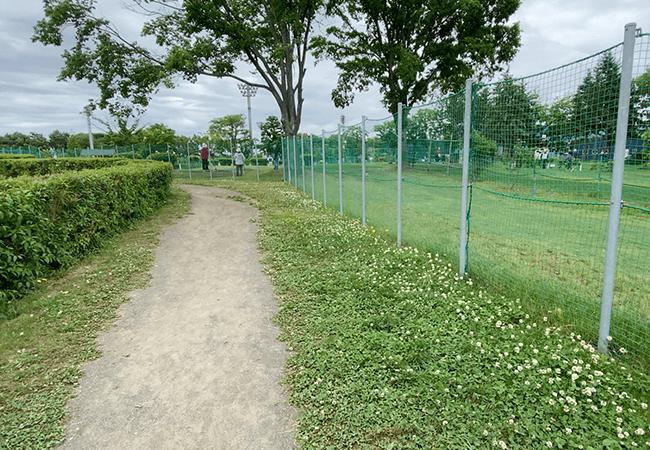 北郷公園園路