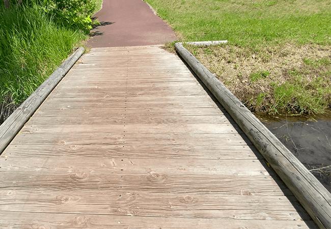 穴の川中央緑地園路