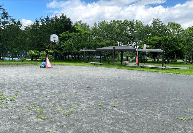 手稲稲積公園バスケットコート