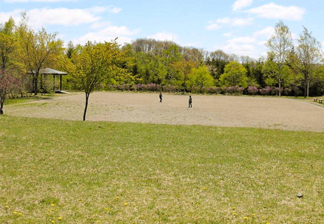 つつじヶ丘公園ゲートボール