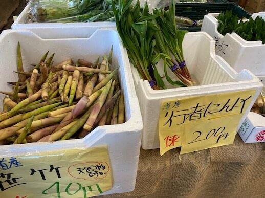 トンデンファーム 野菜